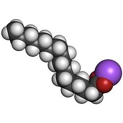 PEA (palmitoylethanolamide)