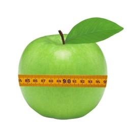 Metabolisme width=