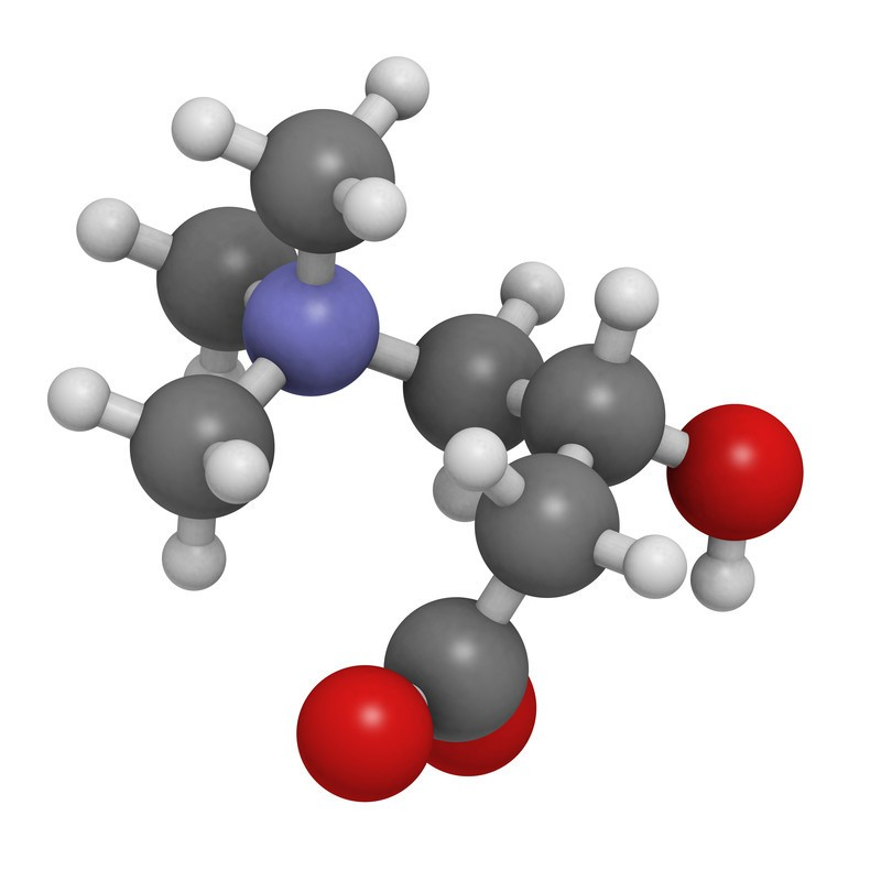 L-Carnitine 400 mg Bonusan